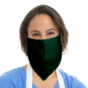 C22 HGN Face Mask Model